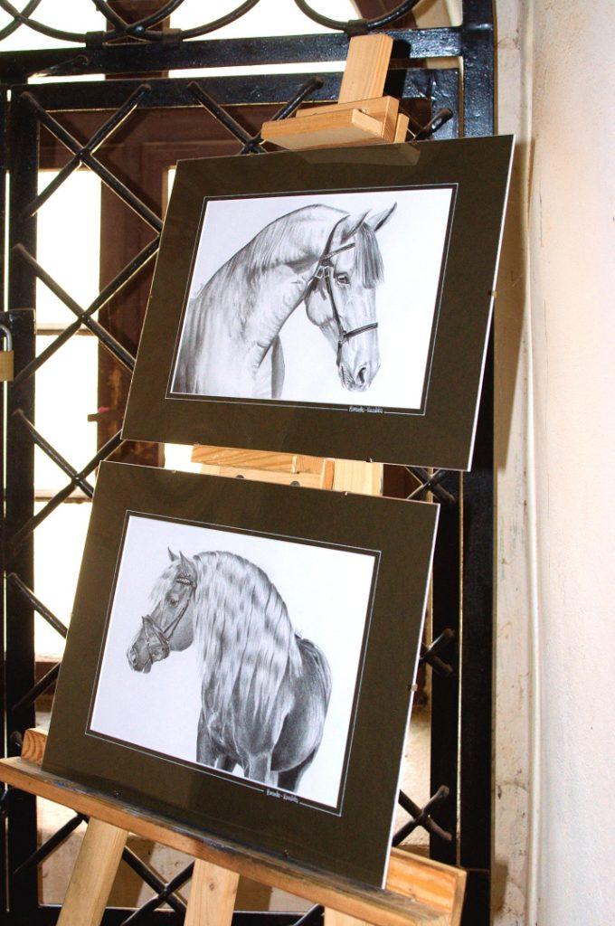 wystawa-rysunku-muraszko-11
