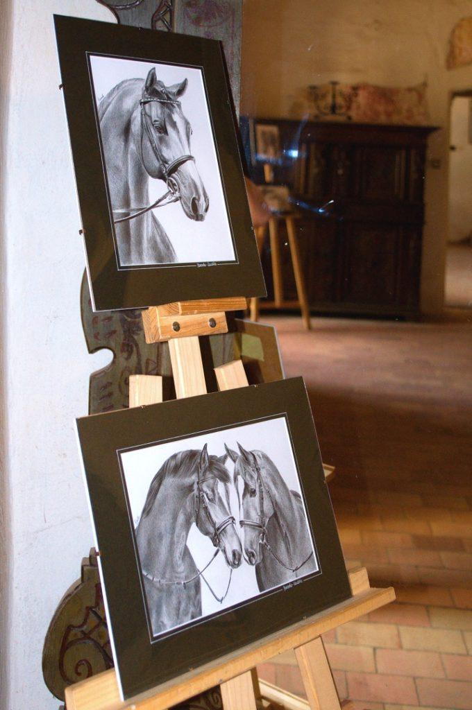 wystawa-rysunku-muraszko-12
