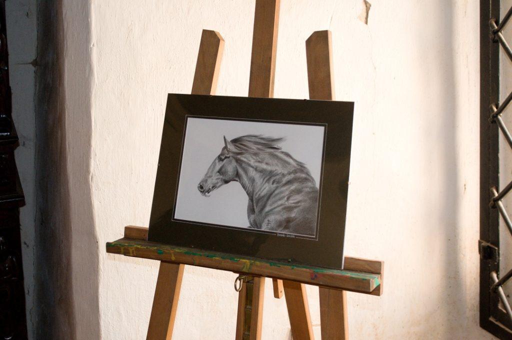 wystawa-rysunku-muraszko-14