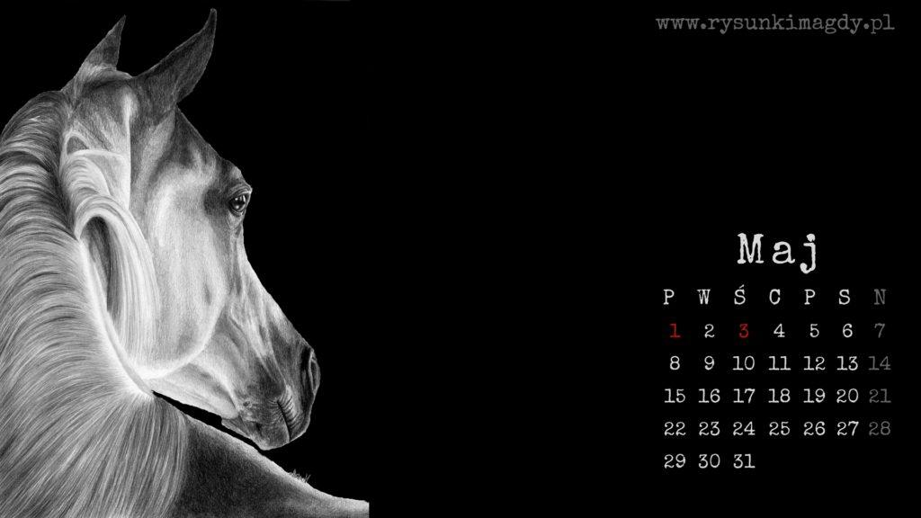 Tapeta na maj 2017 z rysunkiem konia i kalendarzem