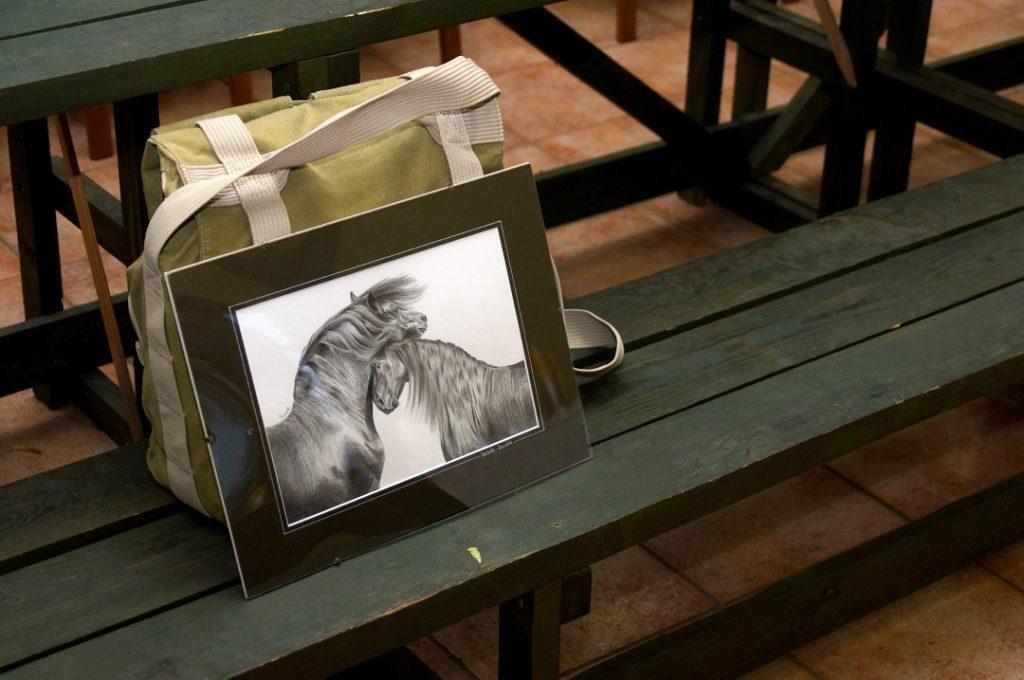 Rysunek konia olowek