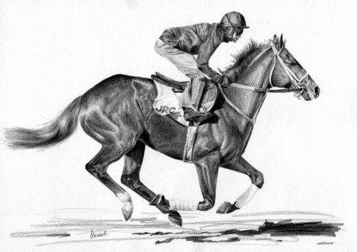 Trening konia wyscigowego