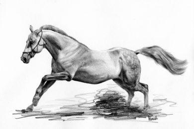 Rysunek siwego konia w galopie.