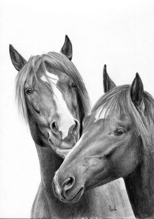 Zabawa koni