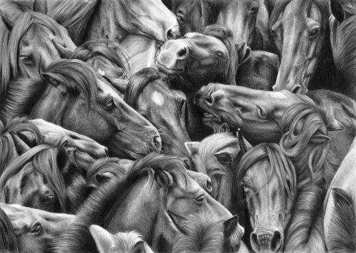 Rysunek stada koni.