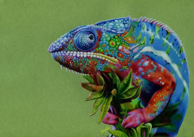 Rysunek kameleona wykonany kredką.