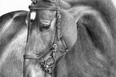 Koń w ogłowiu Micklem