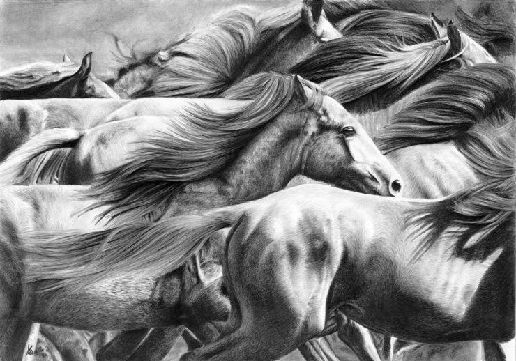 Rysunek stada pędzących koni.