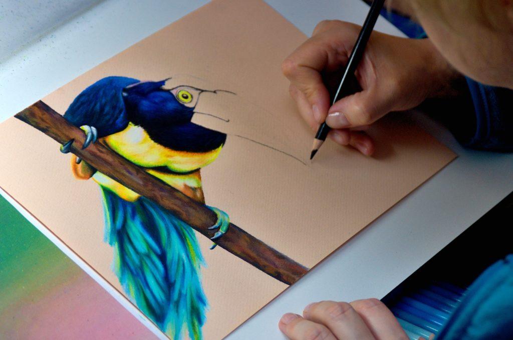 Rysunek tukana, w czasie powstawania pracy.