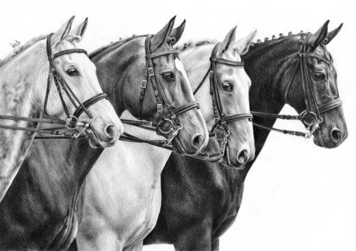 Rysunek czterech koni w munsztukach.