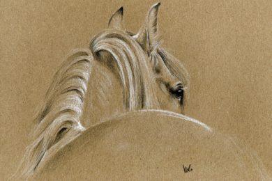 Rysunek siwego konia na papierze ekologicznym.
