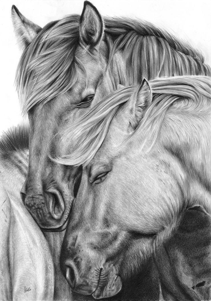 Rysunek dwóch przytulonych do siebie koników polskich.