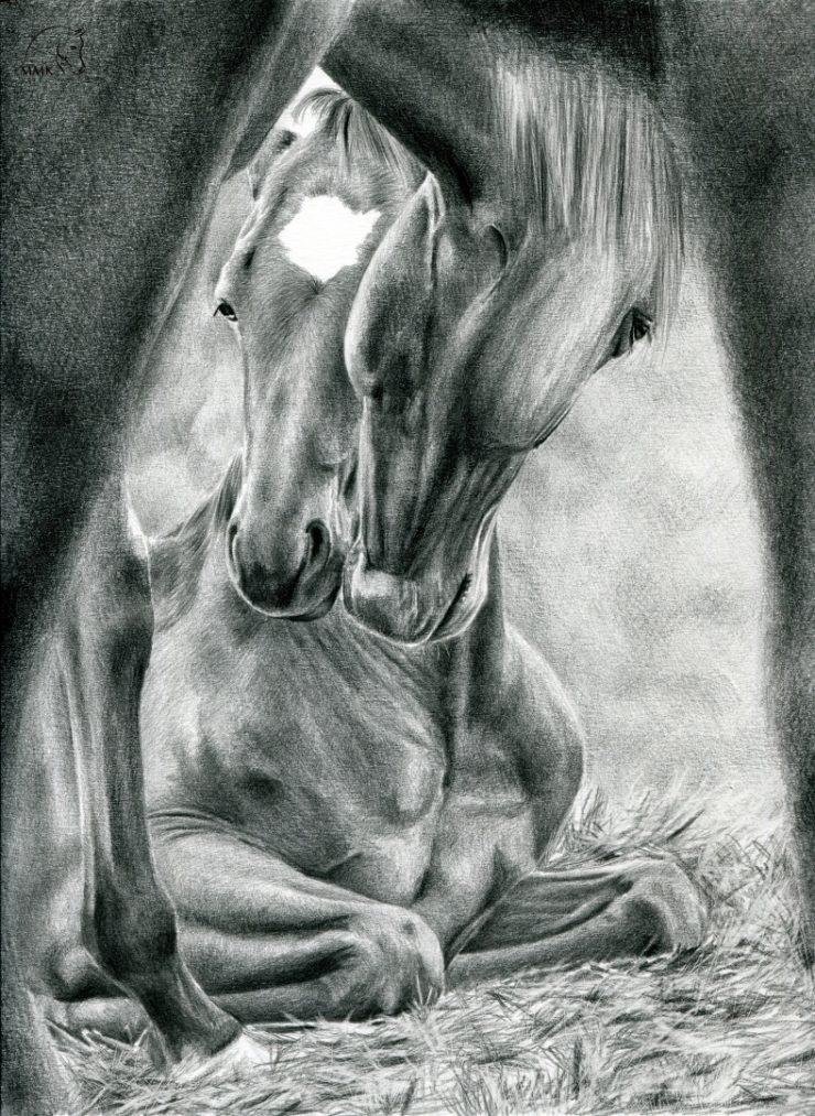 Rysunek leżącego źrebaka i jego matki.