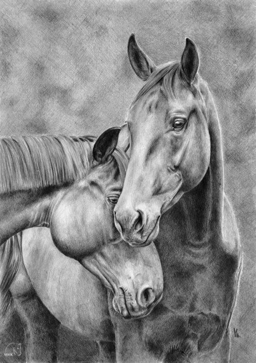 Rysunek dwóch przytulonych koni.
