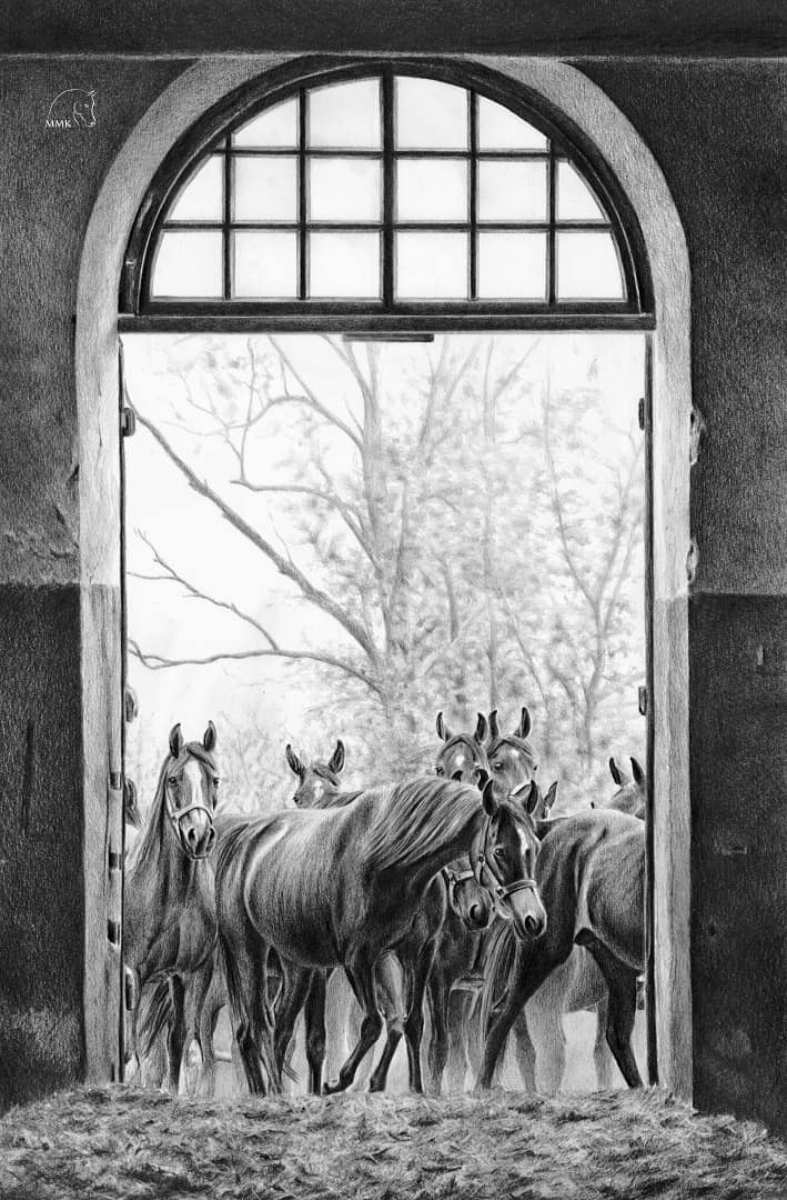Konie w drzwiach stajni.